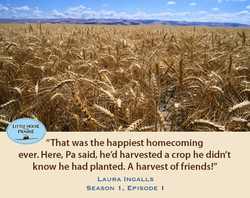 a said he'd harvested a crop he didn't know he had planted. A harvest of friends!