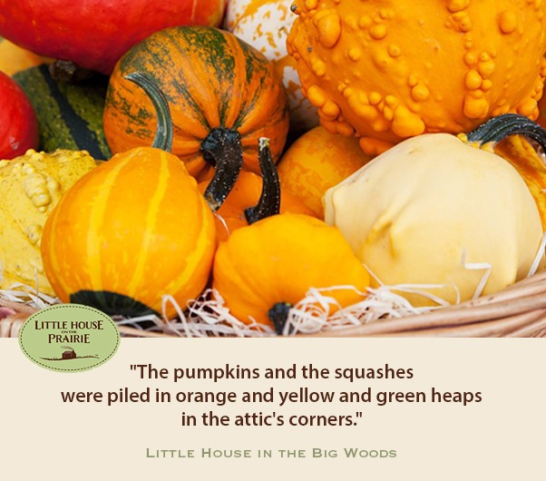 The pumpkins and the squashes were piled in orange