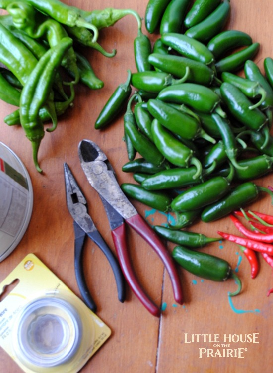 Supplies to Make a Pepper Wreath