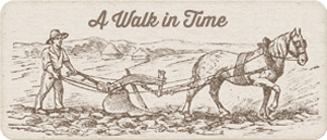 A Walk In Time - Laura Ingalls Wilder Timeline