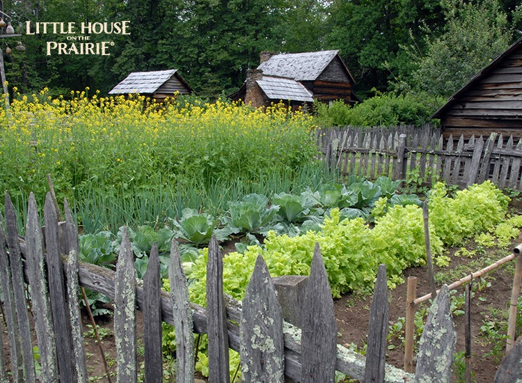 Pioneer Kitchen Gardens