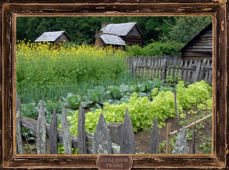 Pioneer Kitchen Gardens: How the Pioneers Planned and Planted