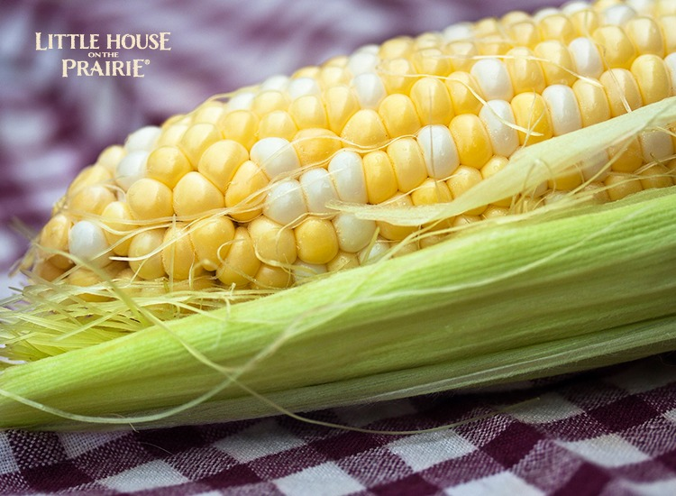 Growing, harvesting and preserving heirloom corn in the garden