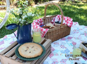 Little House on the Prairie Inspired Picnic