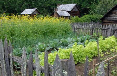 little house on the prairie history brought to life pioneer kitchen garden